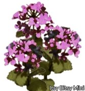 Flower Kit Hydrangea Purple