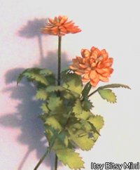 Flower Kit Dahlia Orange