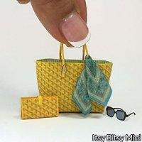 Dollhouse Handbag, Wallet, Silk Scarf, Sunglasses Set