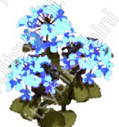 Flower Kit Hydrangea Blue - Click Image to Close