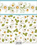 Wallpaper - Daisy Blue Border - Toss White
