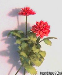 Flower Kit Dahlia Red