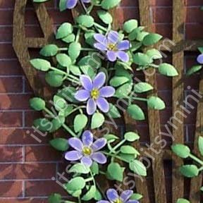 Flower Kit Clematis Purple - Click Image to Close