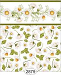 Wallpaper - Daisy Green Border - Toss White